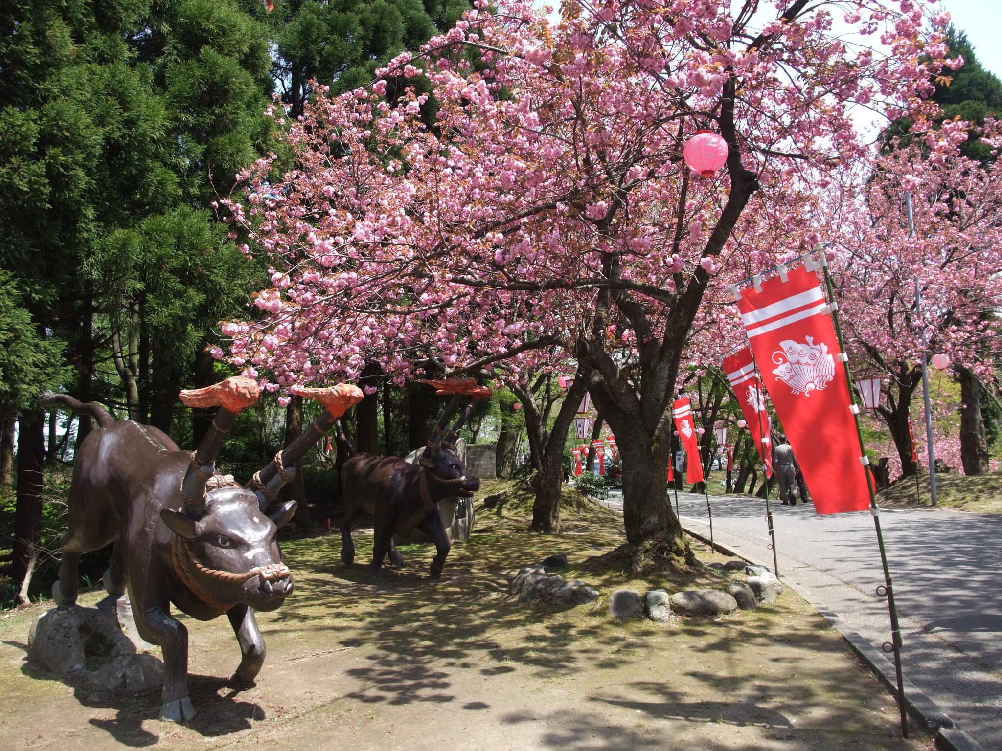 倶利伽羅(くりから)県定公園の写真