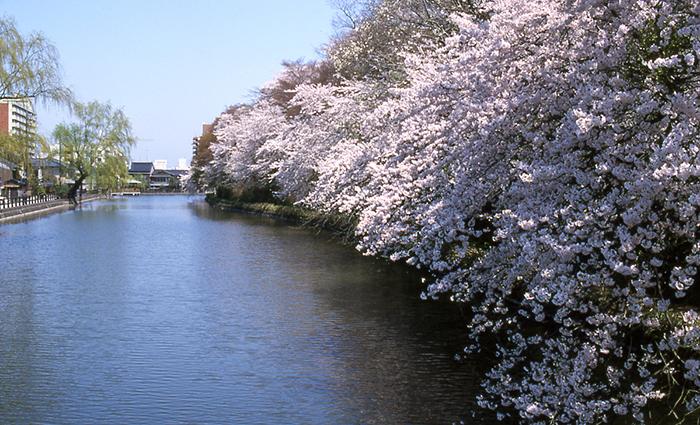 高岡古城公園(高岡城跡)の写真